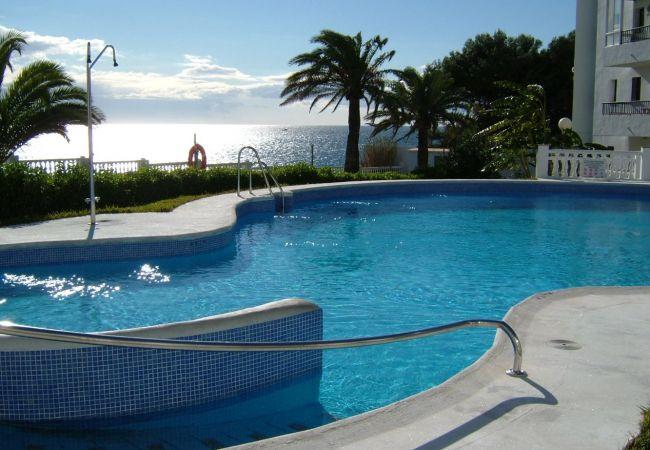 Apartamento en Nerja - Palmeras Playa Centro Nerja Canovas (3211)