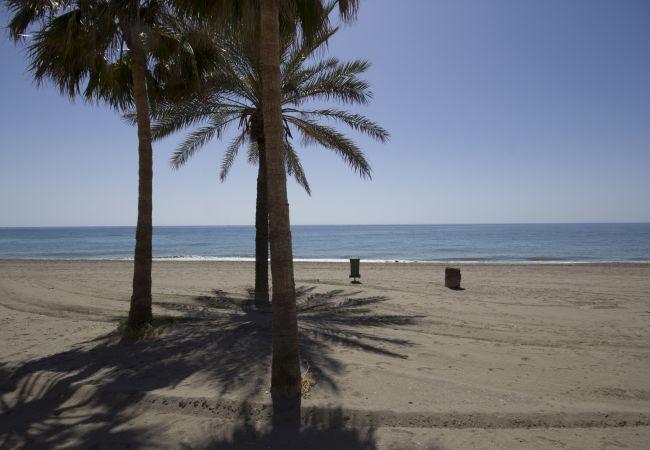 Estudio en Torrox - Beach Apartment Mediterráneo Torrox Canovas