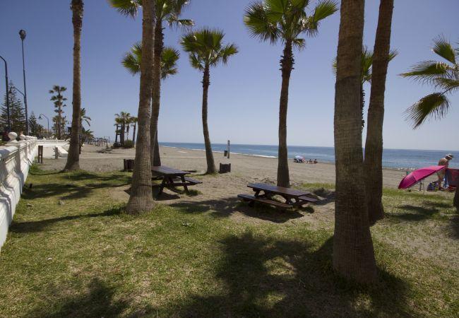 Estudio en Torrox - Beach Apartment Mediterráneo Torrox Canovas CN